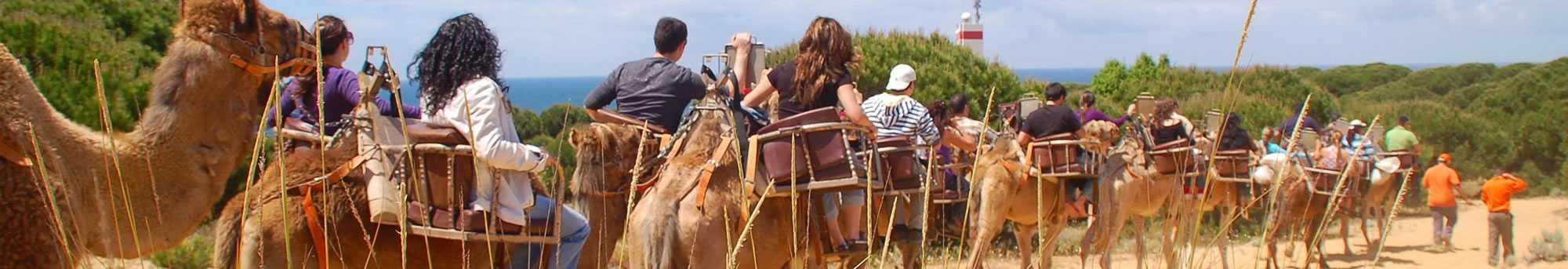 Ruta en Camello - Mojacar