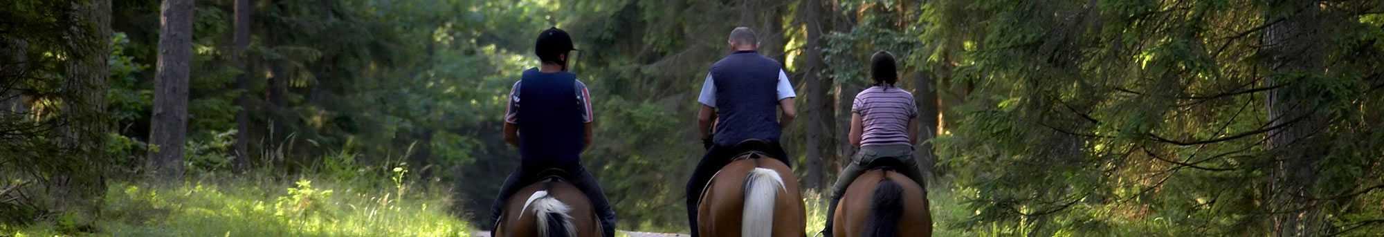 Paseo a caballo - Andorra