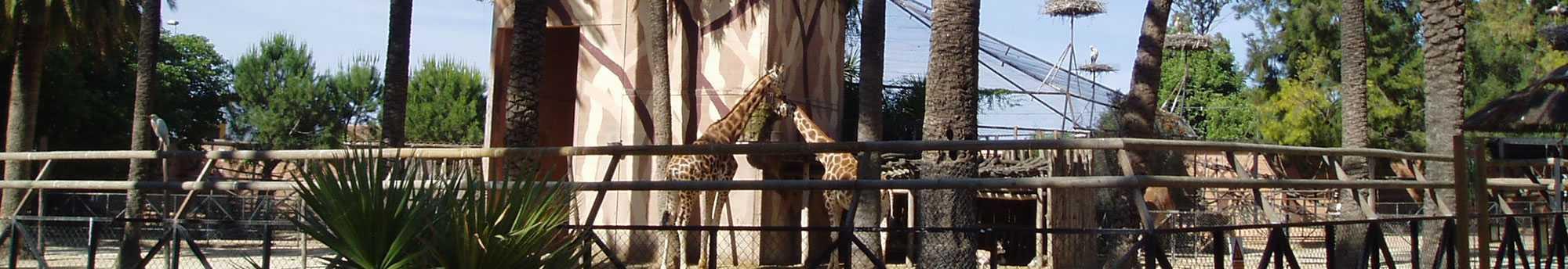 Entradas al Zoobotánico de Jerez