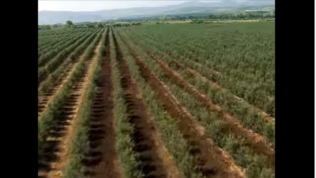 Descubre La Rioja en un click
